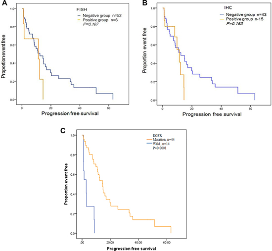 Progression-free survival (PFS) curves for the 58 patients treated with Gefitinib or Elorinib.