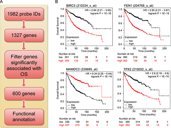 Flow diagram for identifying and validating a prognostic biomarker panel for LuADC.