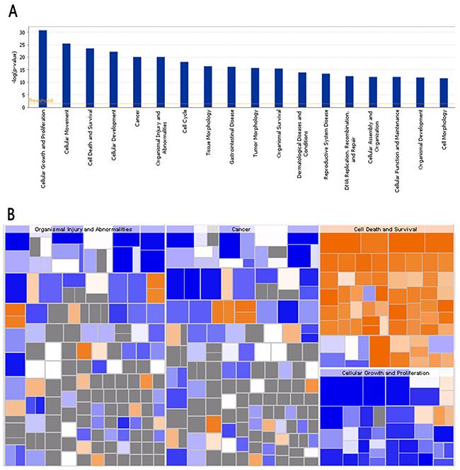 Bio-informatics analysis of the disease and function.