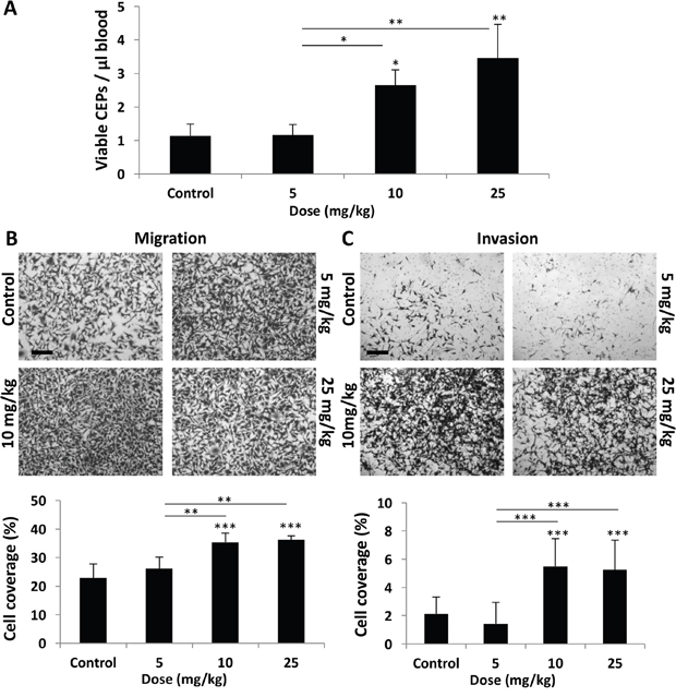 Host response following PTX chemotherapy is dependent on drug dose.