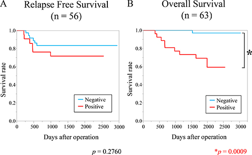 High expression of YTHDF1 was associated with poorer overall survival.