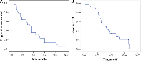 The efficacy evaluation of apatinib in patients with advanced NSCLC.