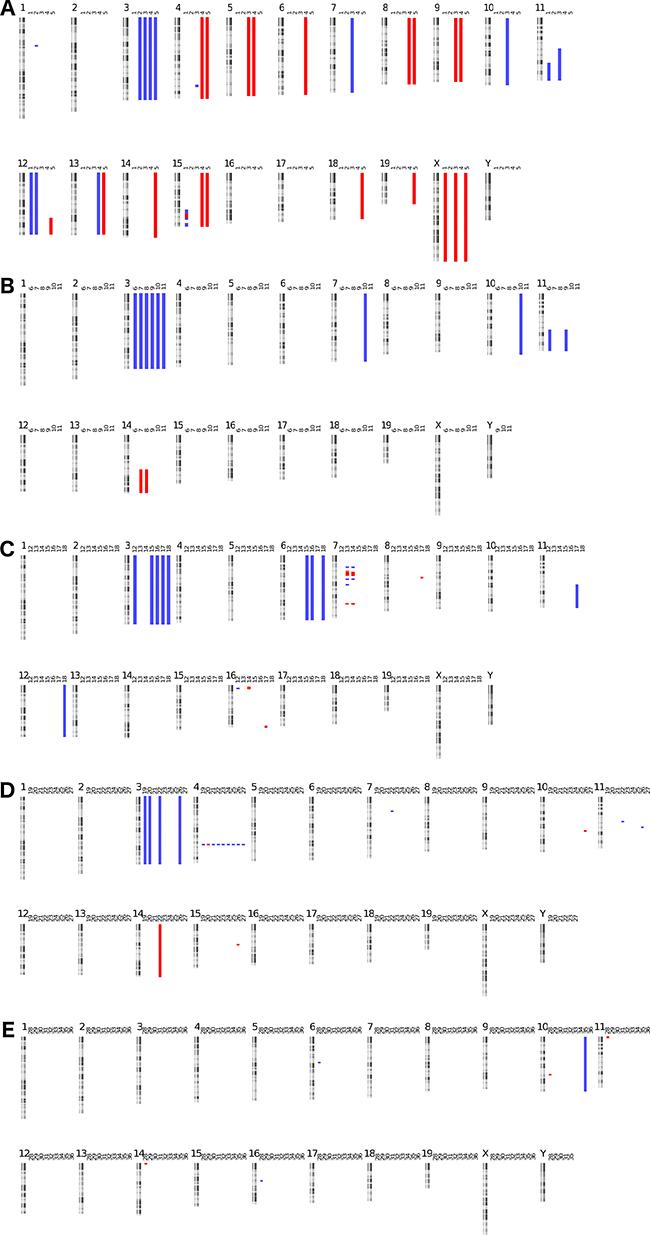 Murine tumor kayo views: DNA copy number profiles of murine tumor samples.