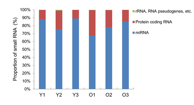 Bar graph of small RNA classification in the exosomes.