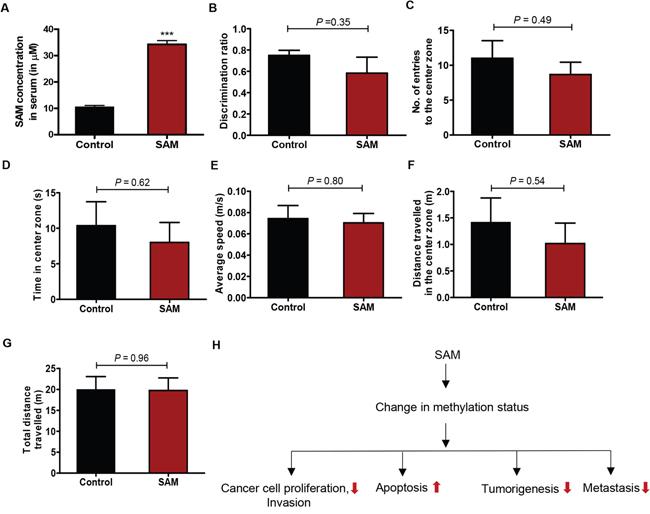 Assessment of bioavailability and animal behavior upon SAM-treatment.