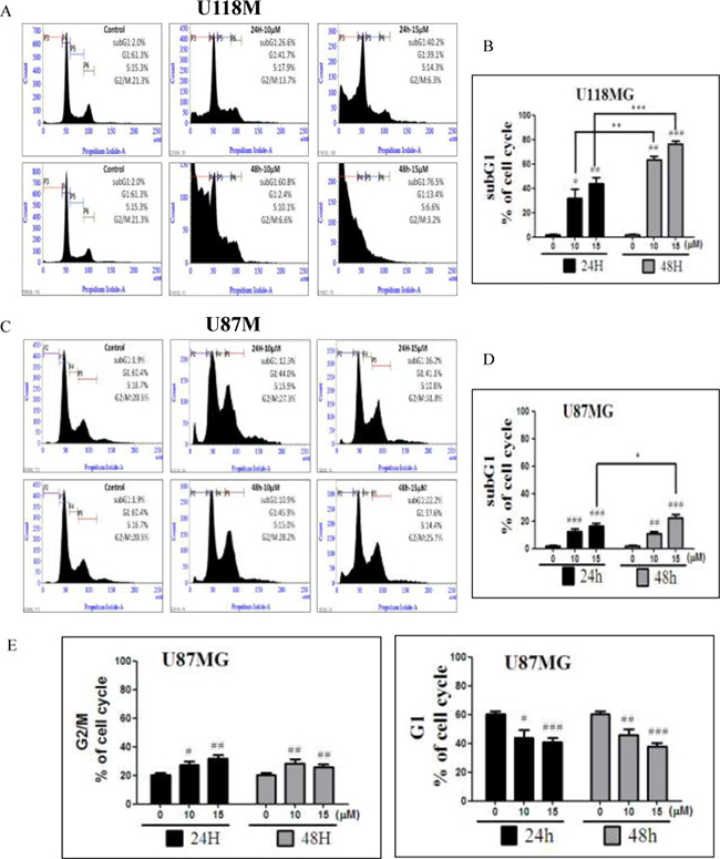 Regulation of the cell cycle by NSC745887 treatment of U118MG and U87MG cells.