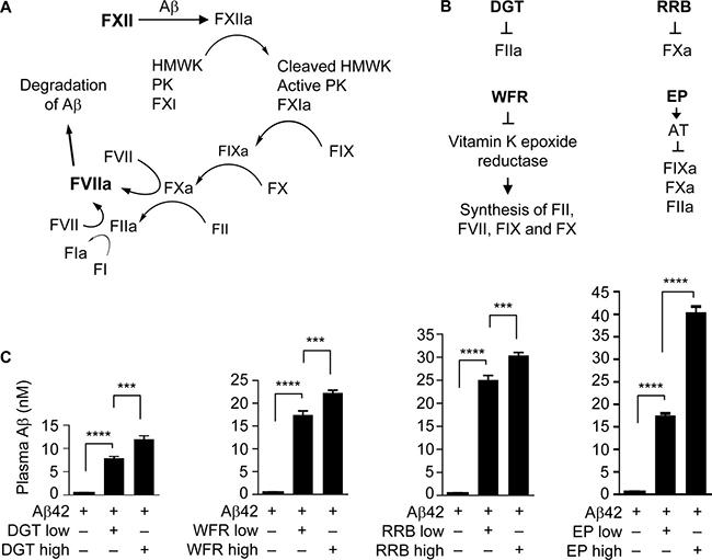 Anticoagulants elevate plasma Aβ42 level.