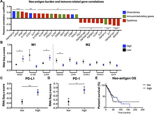 Oncotarget   Mutations in DNA repair genes are associated