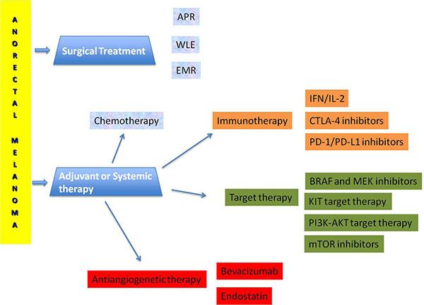 Terapeutic management of anorectal melanoma.