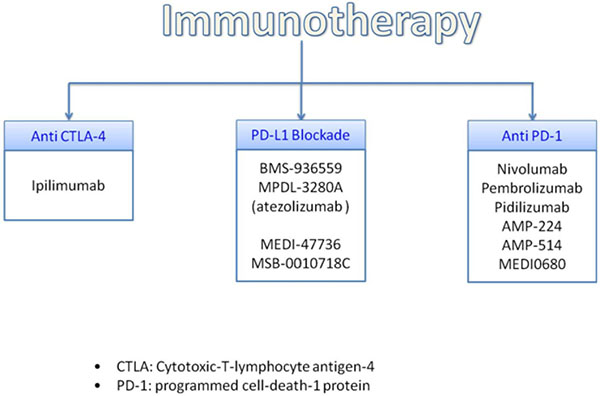 Promising immunotherapy treatment.