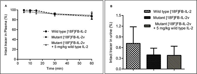 In-vivo metabolism of wild-type [18F]FB-IL2 and mutant [18F]FB-IL2v in Wistar rats, as determined by the TCA precipitation assay.