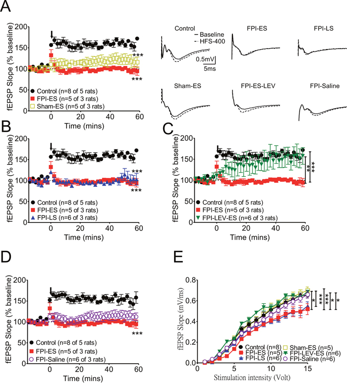 After brain injury, the suppression of synaptic plasticity as manifested by LTP in the hippocampus in seizure animals was prominent.