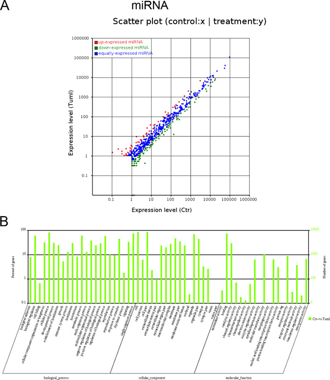 Expression profiles of differentially expressed miRNAs and Gene ontology (GO) terms for target mRNAs of differentially expressed miRNAs between infantile hemangioma and adjacent normal skin tissues.