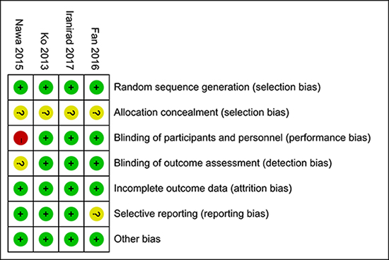 Assessment of the risk bias: bias of risk summary.