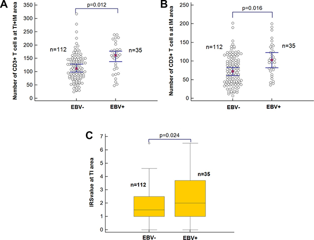 The association of EBV infection with immune status.