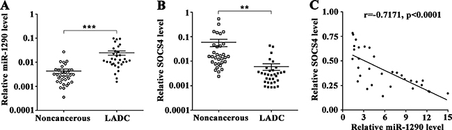 SOCS4 levels is inversely correlated with miR-1290 levels in lung adenocarcinoma tissues.