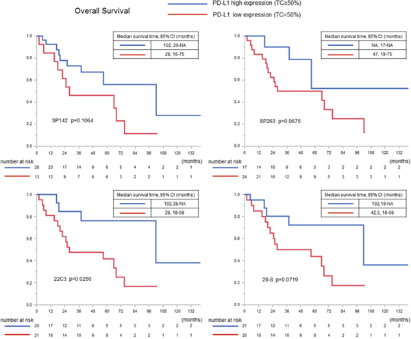 The overall survival curves in all squamous cell carcinoma cases according to the PD-L1 expression (using a cutoff value of 50%).