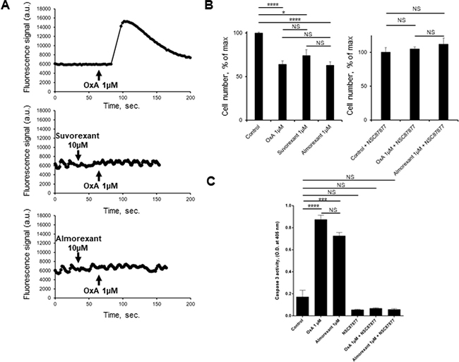 Effect of almorexant and suvorexant on intracellular Ca2+ release, cell growth and caspase-3 activity.