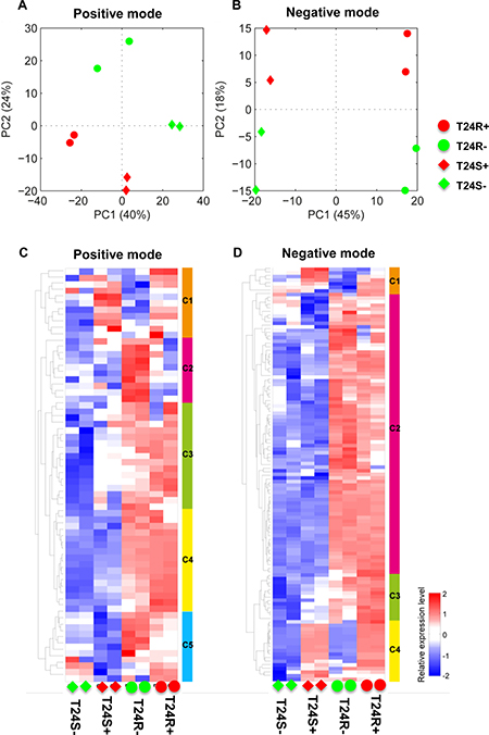 Differentially expressed lipids in T24R compared to T24S.