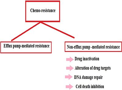 The chart describes different methods of chemo-resistance.