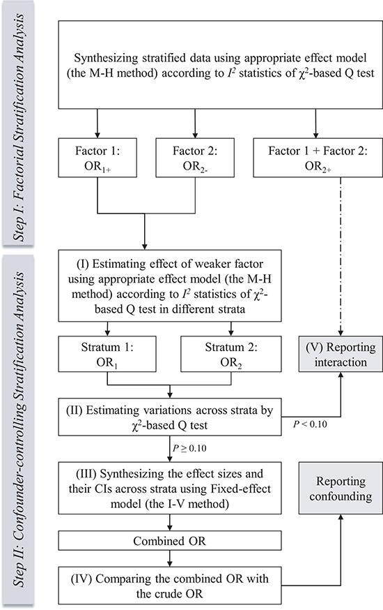 Flow diagram of the process of standard stratification analysis in meta-analysis.
