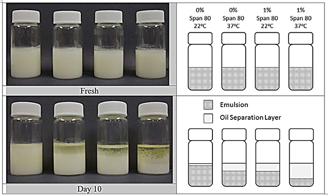 Stability of MPSE without solute added, but containing 0 or 1% Span 80 in the oil phase, as compared for freshly prepared emulsions (top) and emulsions after ten days (bottom).