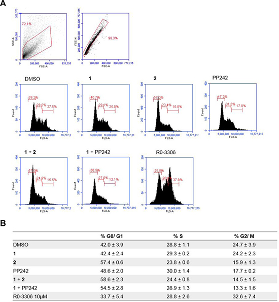 Flow cytometry analysis of the effect of MNKI-19, 191.3 and PP241 both as single agents and in combination (5 μM) on cell cycle progression.