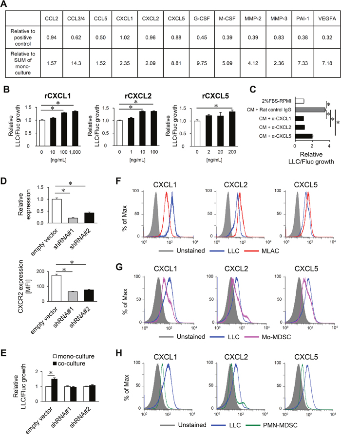 MLACs promote tumor growth via CXCL1/2/5/CXCR2 signaling.