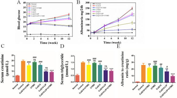 Biochemical indictors of STZ-induced diabetic rats after CoQ10-LIP+UTMD treatment.