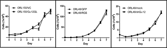 Gα12 is not involved in regulating OSCC proliferation.
