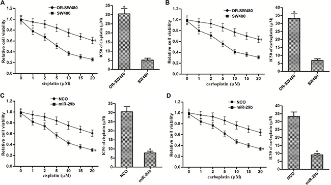 MiR-29b reversed cross-resistance of OR-SW480 cells to platinum-based treatment.