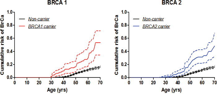 Breast cancer penetrance estimates by the modified kin-cohort method using data from first-degree relatives of probands who carry BRCA1 or BRCA2 mutations from Hong Kong Hereditary and High Risk Breast Cancer Programme.