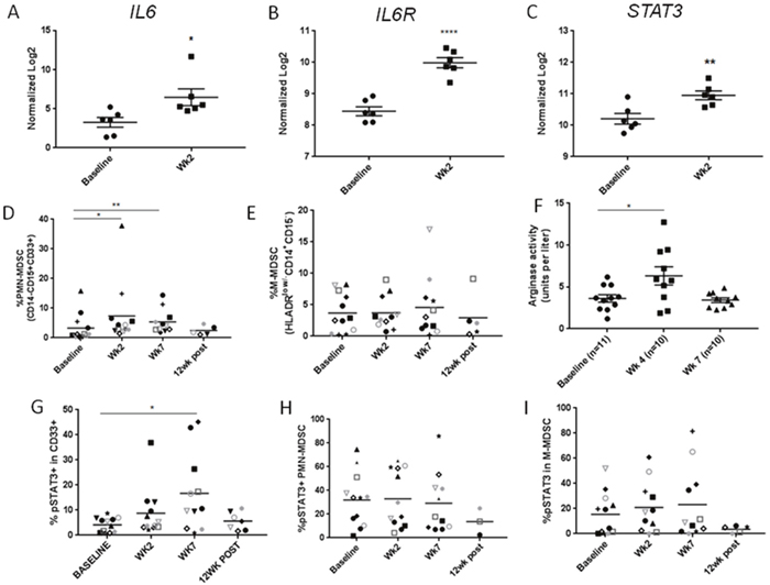 The accumulation of PMN-MDSCs with STAT3 activity in HNSCC patients after CMT.
