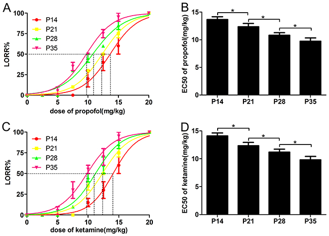 The EC50 of the loss-of-righting reflex (LORR) induced by propofol and ketamine was reduced with the development of mice.