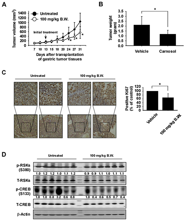 Carnosol attenuates gastric cancer patient-derived xenograft tumor growth in vivo.