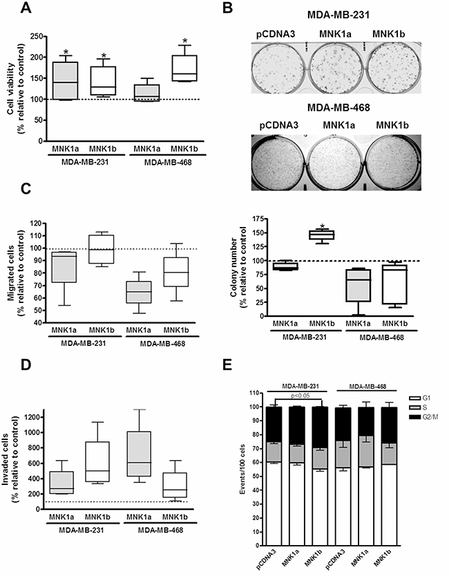 Oncotarget | Increased expression of MNK1b, the spliced isoform of