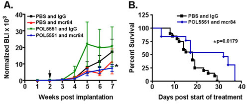 Combined mcr84 and LD-POL5551 blocks brain tumor growth and increases survival