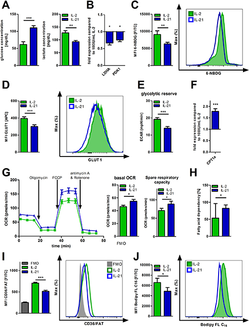 Metabolic reprogramming of IL-21 treated T-cells.
