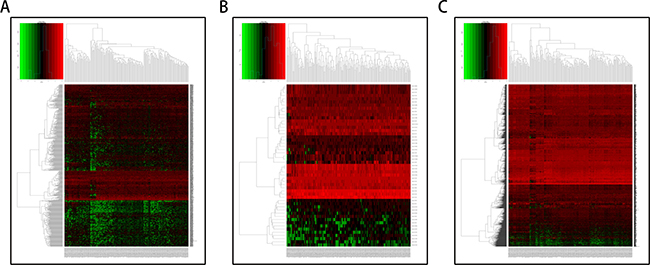 Hierarchical clustering of pancreatic adenocarcinoma and control tissues by differentially expressed RNAs.