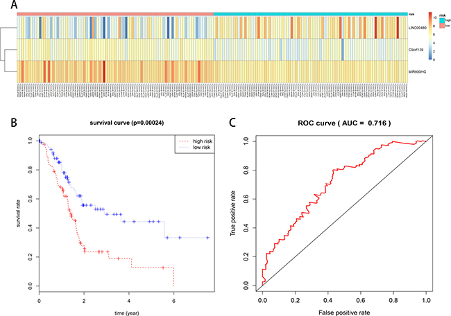 Prognostic evaluation of the 3-lncRNA signature in PAAD patients.