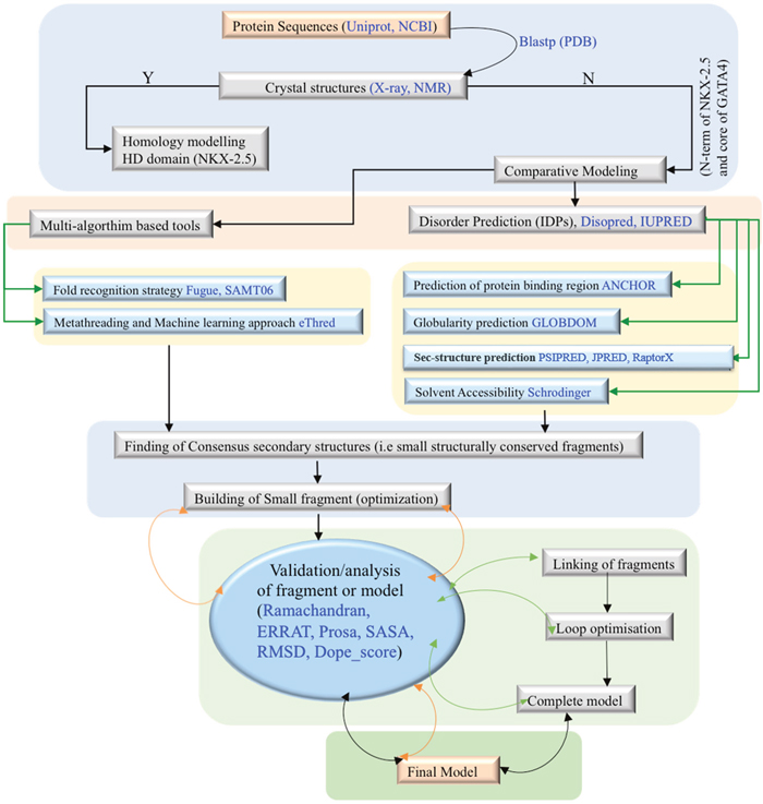 Scheme1: Flowchart of molecular modeling pipeline.