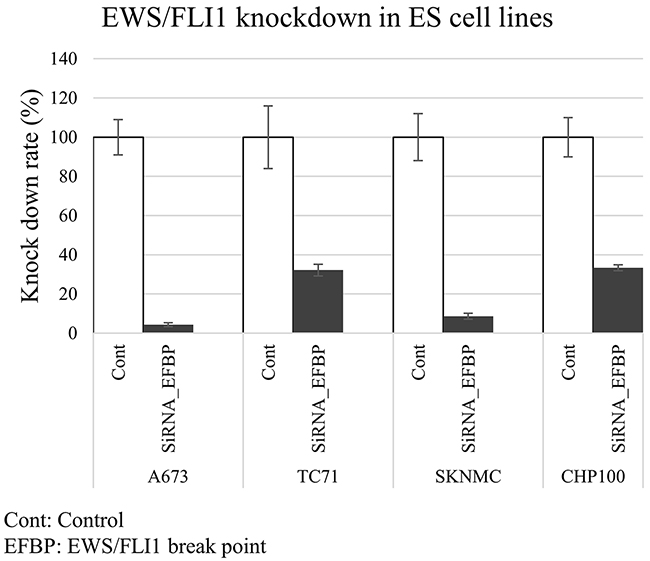 Expression of EWS/FLI1 in ES cell lines.