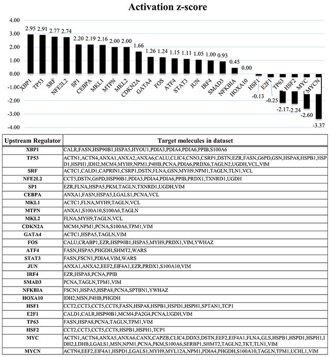 IPA analyses based on the protein profile of EWS/FLI1.