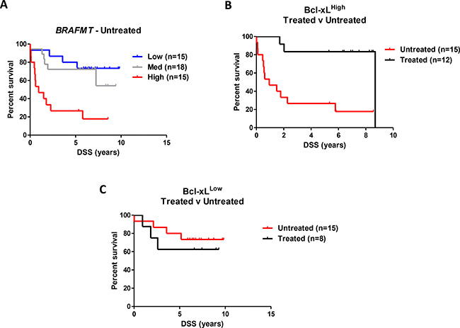 Independent validation of the prognostic value of Bcl-xL protein expression in BRAFMT CC.