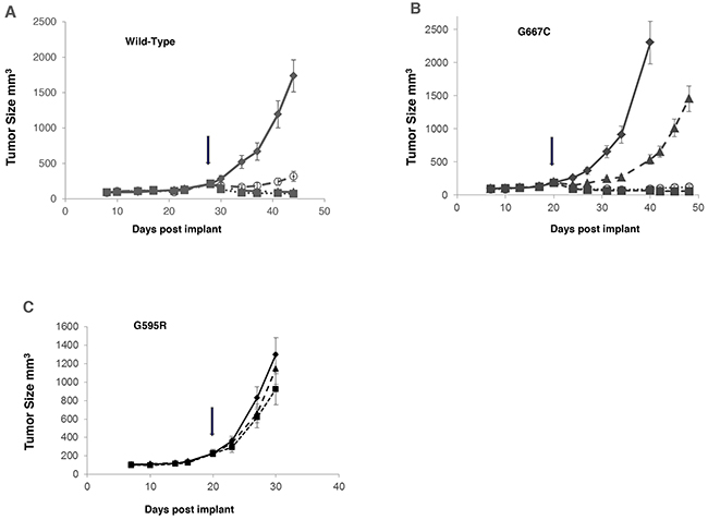 Comparison of anti-tumor effect of merestinib with entrectinib in vivo in tumors bearing G595R or G667C mutation.