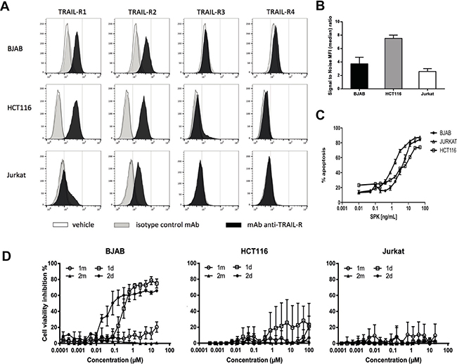 Divalent TRAILmim/DR5 induce apoptosis in BJAB cells but not in HCT116 and Jurkat cells.