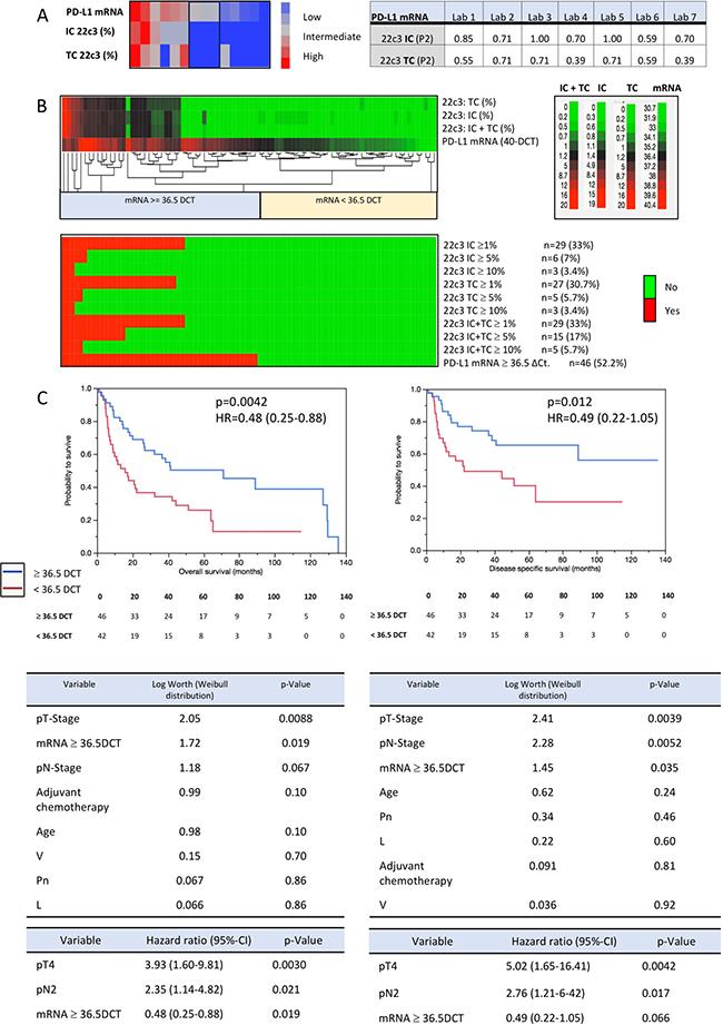 Sensitivity validation and prognosis prediction (PD-L1 gene expression).
