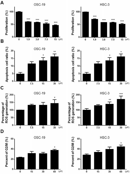 Anti-cancer effect of M-PTX in human squamous cell carcinoma.