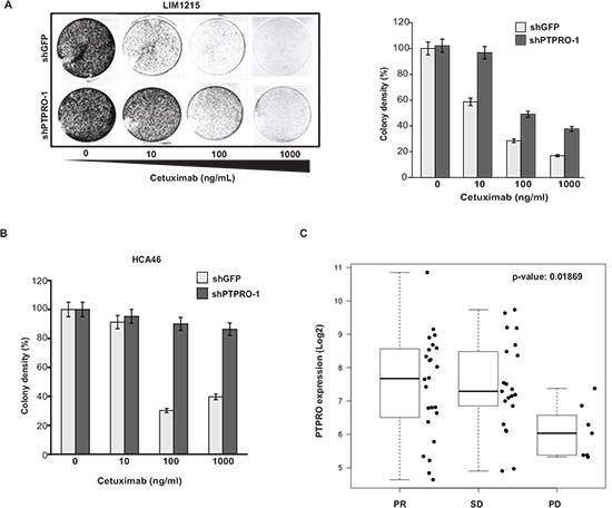 Loss of PTPRO expression leads to resistance to cetuximab.