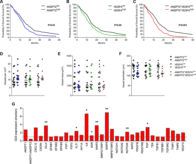 Combined high expression of Ang-2 and VEGFA associates with survival and increased IL-8 expression.